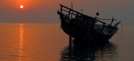 کارگروه چهار روزه اپنسیس بوشهر (خلیج فارس) آبان ۹۵